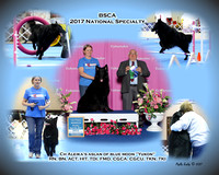 BSCA 2017 Nationals